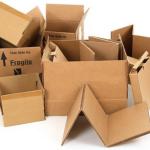 Dinosans, producator cutii carton
