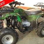 Atv-uri de vanzare import Germania